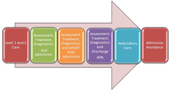 Acute-med-pathway