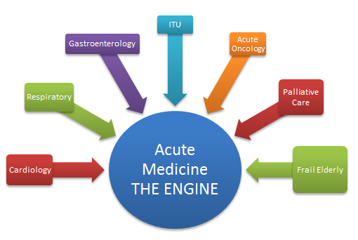 acute-med-engine