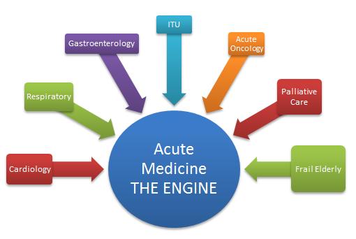 acute-med-engine