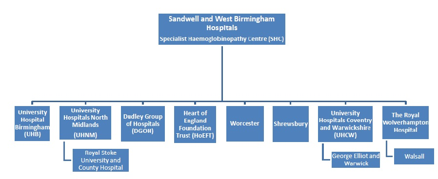 Sickle Cell & Thalassaemia - Sandwell and West Birmingham